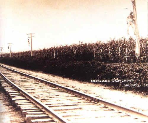 Cristero's werden opgehangen aan de telegraafpalen langs de spoorwegen.