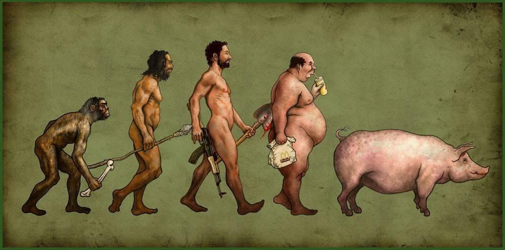 evolutie (04)