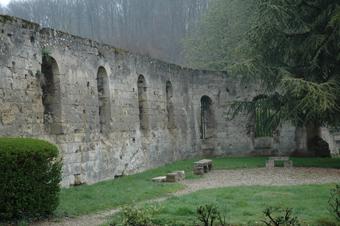 Ruïnes in Prémontré.